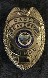 Cadet Badge.jpg
